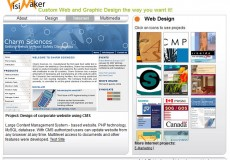 VisiMaker – Previouse design of my portfolio website
